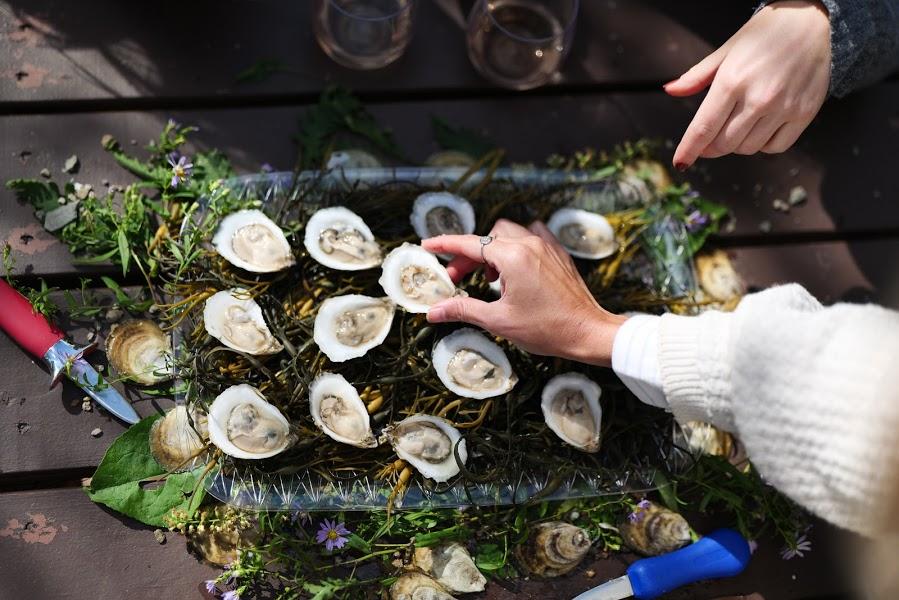 maine oyster trail raw bar