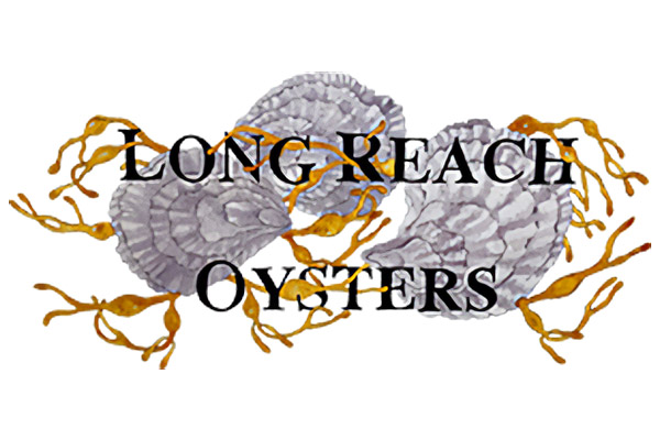 Long Reach Oysters