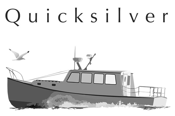 Quicksilver Water Taxi & Charter Boat