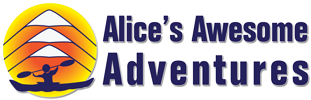 Alice's Awesome Adventures