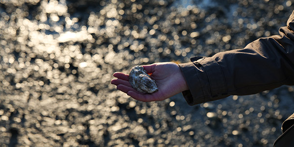 Woman Holding Oyster
